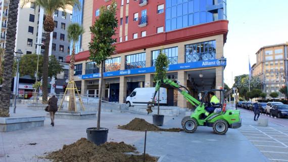 Plantan en los dos últimos meses 50 árboles y 1.100 flores de temporada en Huelva
