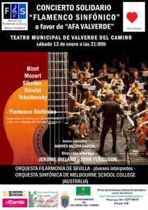 Cartel del concierto solidario.