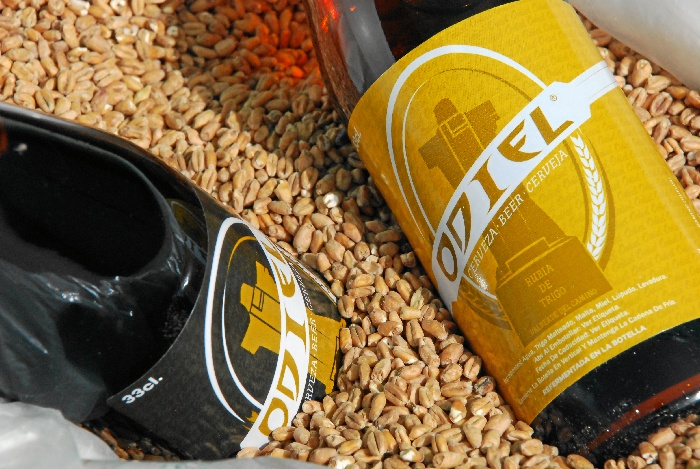 Cerveza artesana elaborada en Valverde de Camino.