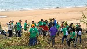 Más de 300 adolescentes han participado en el encuentro andaluz de scouts Green Doñana.