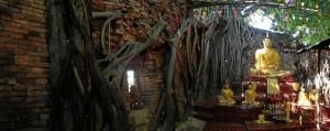 Templos en la naturaleza, joyas del país.