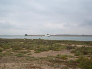 En Huelva podemos disfrutar de paisajes increíbles mientras cogemos la bici. / Foto: Junta de Andalucía.