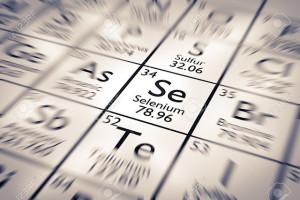 El selenio es un elemento presente en el organismo en multitud de formas químicas y en numerosas funciones fisiológicas.