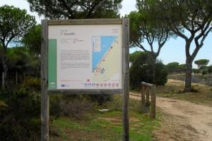 El carril de 'El Asperillo' recorre más de 24 kilómetros en los términos municipales de Almonte y Moguer. / Foto: Junta de Andalucía.