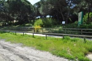 El carril de Los Enebrales nos permite disfrutar de magníficos paisajes naturales. / Foto: Junta de Andalucía.