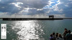 Visita De Muelle a Muelle-Muelle Tharsis, organizado por 'Huelva te mira'.