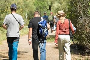 Visitantes-Laguna-Primera-Palos-anillamientos