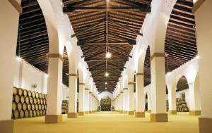 Siglos de historia avalan la tradición vitivinícola de Vinícola del Condado