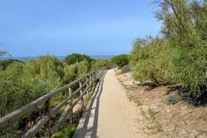 El carril de Los Enebrales discurre por la línea de costa. /  Foto: Junta de Andalucía.