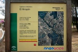 'El Arrayán', una ruta que discurre por el monte de Hinojos. / Foto: Junta de Andalucía.