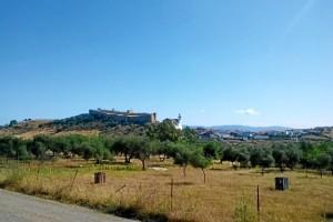 Desde el carril puede disfrutarse de una bella panorámica del Castillo de Santa Olalla. / Foto: Junta de Andalucía.
