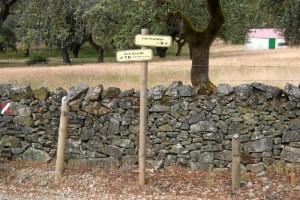 Este carril serrano recorre un paisaje natural único en Andalucía. / Foto: Junta de Andalucía.