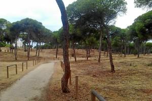 'Salinas del Astur' completa el itinenario de carriles bicis de Punta Umbría. / Foto: Junta de Andalucía.
