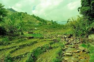 Visita a Lao Chai, poblado de la etnia Hmong.