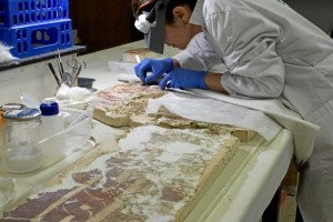 Está especialmente ilusionada con este trabajo, puesto que anteriormente había trabajado con mucha cerámica islámica, pero es la primera vez que aparecen pinturas murales de esta época en Huelva.