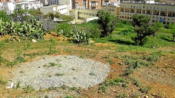'Huelva te mira' organiza una Verbena Cabezuda para reivindicar la conservación sin edificar de La Joya