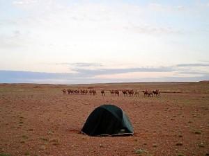 Acampando en el desierto de Gobi, en Mongolia.