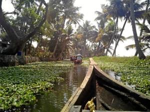 Recorriendo los famosos 'backwaters' de Kerala, una extensa red de canalaes, ríos y lagos.