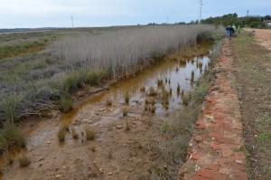 La zona objeto de la excavación del BIC declarado por la Junta de Andalucía se encuentra a tan solo 12 metros de la vía del tren.