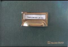 articulo5 Las Fichas Taylor,