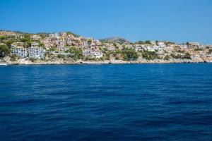 En Mallorca se localiza el primer foco endémico de la enfermedad en España.