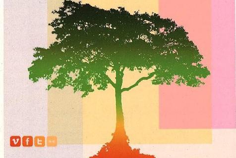 La sede de La Rábida de la Unia celebra una Jornada de voluntariado medioambiental