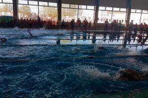 Un momento de una de las pruebas de natación.