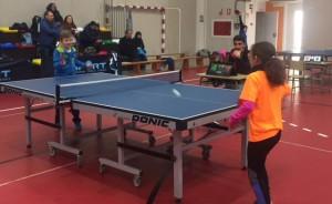El domingo concluye en Ayamonte la Liga Provincial de Tenis de Mesa.