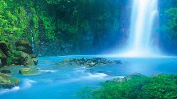 Doñana Natural Life tendrá proyección internacional con Costa Rica como país invitado