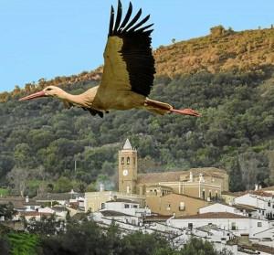 Fotografía de Almonaster la Real por Manuel Ruiz.