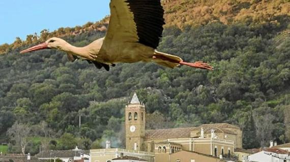 Almonaster la Real, entre las diez finalistas de la II edición del Concurso de Fotografía de los Pueblos más Bonitos de España