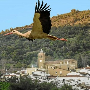 Fotografía de Almonaster la Real, por Manuel Ruiz.