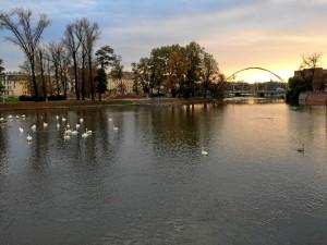 """""""En Wroclaw hay muchos parques, numerosas iglesias, y en particular, múltiples islas y por lo tanto puentes; el río Odra cruza toda la ciudad"""", comenta Violeta."""