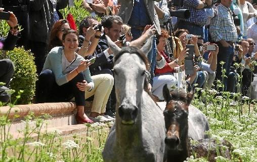 Doñana Natural Life recibe más de 50.000 visitas y sitúa a Huelva como referente del ecoturismo
