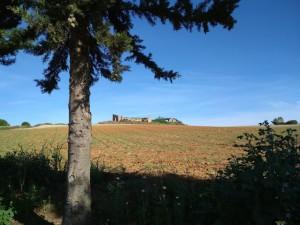 Vista de los restos del convento de Morañina, en el término municipal de Bollullos.