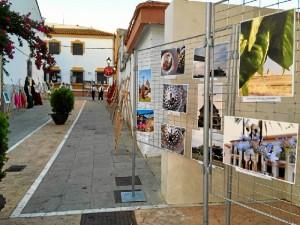 El arte sale a la calle en Villarrasa.
