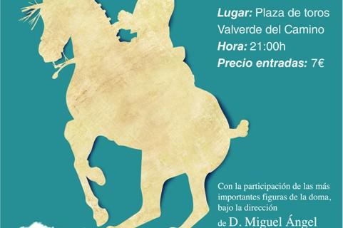 Proyecto Hombre presenta la IV edición del espectáculo de doma vaquera, clásica y de alta