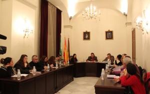 Sesión plenaria en el Ayuntamiento de Trigueros.