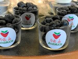 El compromiso de Fruta de Andalucía en la promoción del arándano es firme.