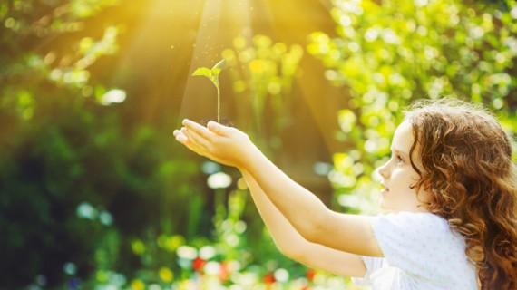 Un árbol por cada recién nacido en HLA Los Naranjos