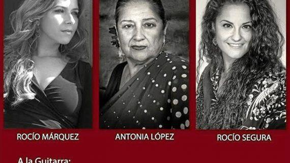 Ayamonte prepara el X Festival Flamenco 'Antonia López. Ciudad de Ayamonte'