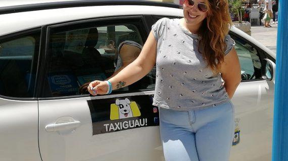 Llega el servicio de taxi para animales a Huelva
