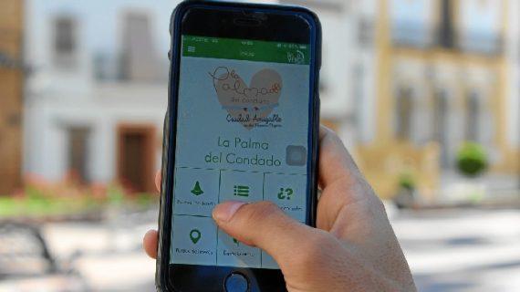 El servicio Línea Verde de La Palma demuestra su eficacia solucionando más del 80% de las incidencias comunicadas