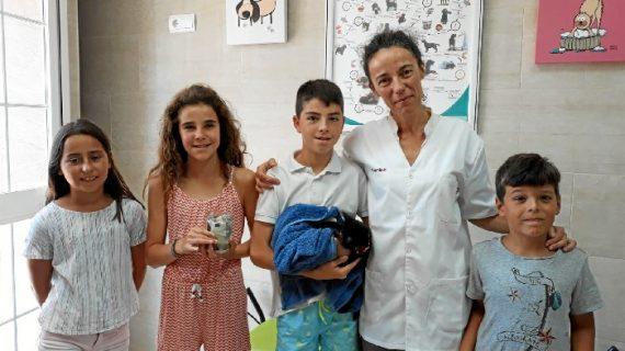 Cinco menores isleños salvan la vida a un gatito callejero herido en Islantilla
