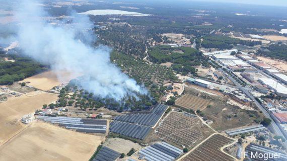 Controlado un nuevo incendio forestal en el paraje Montemayor de Moguer