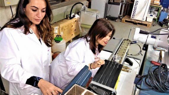 Científicas de la Universidad de Huelva encuentran en derivados del trigo una alternativa a los plásticos contaminantes