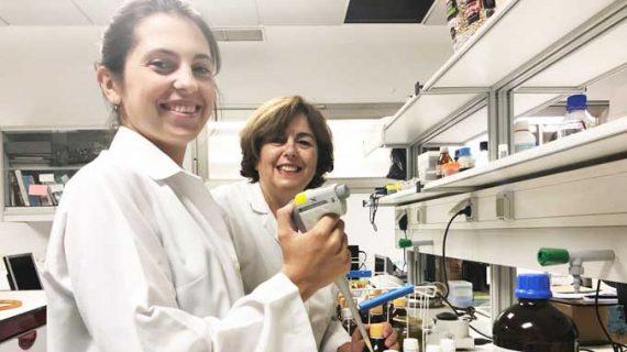 Investigadores onubenses ratifican la excelente calidad del aceite de oliva de Huelva tras estudiar 125 muestras de todo el país