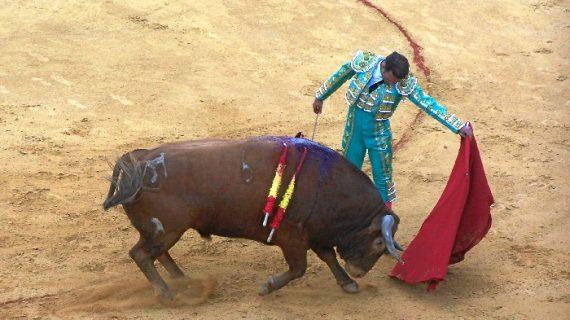 Importante tarde de toros en Cortegana