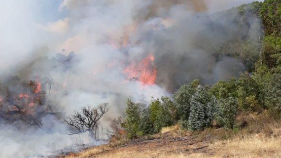Estabilizado un incendio registrado este jueves en La Granada de Riotinto