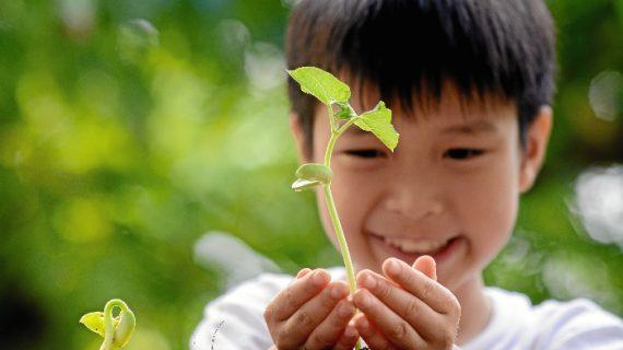 La iniciativa 'un árbol por cada recién nacido en HLA Los Naranjos' ayudará a preservar la capa de ozono
